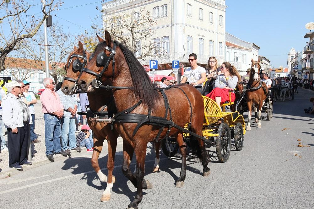 Romaria a Cavalo Moita Viana do Alentejo